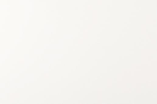 AQ1000 -Arctic White